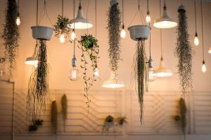 Best Hanging Solar Lights